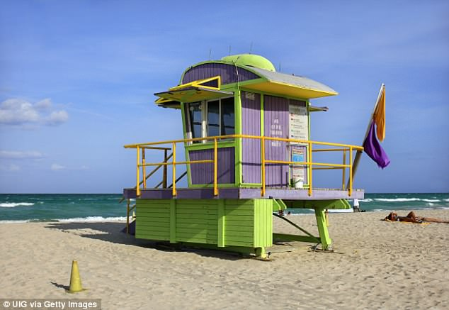Purple flags are flown to warn visitors about marine life (a flag in Miami)